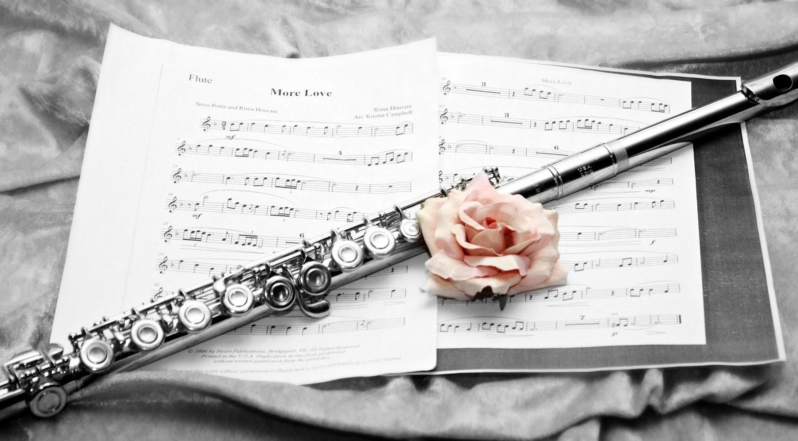 Flute Lessons in Minnesota