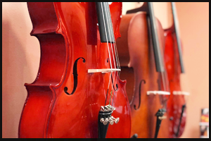 cello shop red image